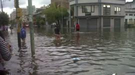 Recomendaciones del Ministerio de Salud de la Provincia de Buenos Aires para evitar el riesgo sanitario después de las inundaciones