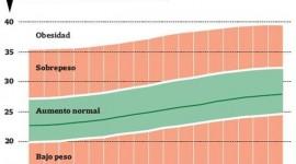 Guías argentinas para el peso de las embarazadas