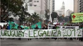 """Comunicado de la Asociación de Química y Farmacia del Uruguay (AQFU) sobre la """"legalización y venta de marihuana en Uruguay"""""""