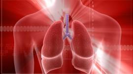 Desarrollan fármaco eficaz en asma y EPOC
