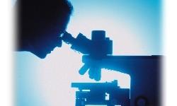 Argentina: Es ley el acceso libre a la información científica