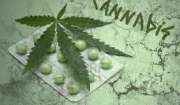 Farmacéuticos uruguayos renunciarán si se vende marihuana en farmacias