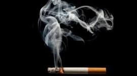 Científicos estadounidenses descifran el mecanismo celular por el que la nicotina fomenta la adicción