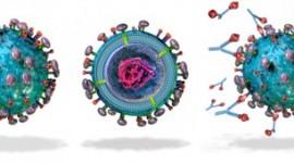 Reunión en el Ministerio de Salud para consensuar recomendaciones en el uso de palivizumab