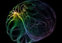 Moléculas humanas, similares a cannabis, combatirían hipertensión