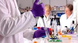 """Abren un nuevo camino hacia fármacos contra infecciones """"olvidadas"""""""