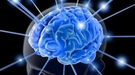 Europa y EE.UU. se lanzan a la conquista del cerebro