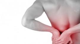 Identifican mecanismo que limita el dolor crónico