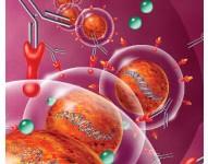 ANMAT aprueba nueva opción terapéutica para tratamiento de la Esclerosis Múltiple