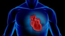 La claritromicina aumenta el riesgo de muerte de origen cardíaco