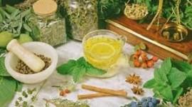 Suplementos vegetales: advierten que pueden presentar riesgos