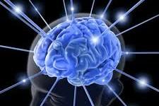 """Nobel de Medicina: cómo funciona el """"GPS del cerebro"""""""