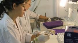 Laboratorio entrerriano será el primero en Sudamérica en exportar a EE.UU.
