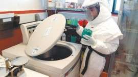 El Malbrán desarrolló un método que diagnostica el Ébola en 24 hs