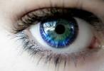 Las células nerviosas del ojo se comunican para prevenir enfermedades