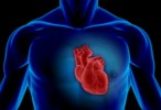 Un nuevo fármaco reduce un 21% el riesgo de muerte en pacientes con insuficiencia cardiaca crónica
