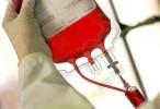 Reino Unido probará en humanos sangre artificial a partir de 2017