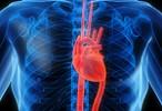 Se hará un registro nacional de pacientes con insuficiencia cardíaca