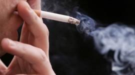 Dejar de fumar con una bacteria