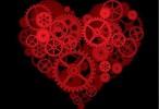 Hallan la clave del desarrollo del músculo cardiaco