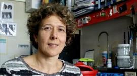 """Andrea Gamarnik recibió el Premio L'Oréal-UNESCO """"Por las Mujeres en la Ciencia"""""""