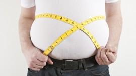 Reducir la flora intestinal podría combatir la obesidad