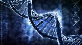 Edición de ADN contra el virus del herpes