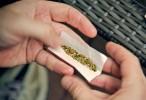 Estados Unidos: Alerta por el avance del K2, una nueva marihuana de laboratorio