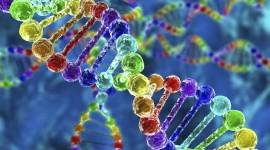 Eslabones perdidos conectan variaciones del ADN con las enfermedades