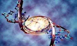 La edad biológica de los pacientes con VIH no es la que marca su DNI