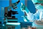 En experimentación: Un fármaco creado a partir del parásito de la malaria para tratar el cáncer de vejiga