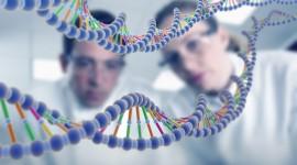 La susceptibilidad a la diabetes tipo 2 está indicada en más de 100 localizaciones cromosómicas