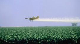 Científicos preparan un documento sobre presencia de agroquímicos en los alimentos