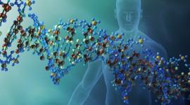 El origen de la periodicidad del genoma