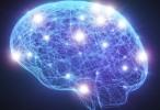 Un descubrimiento para desarrollar mejores tratamientos para el Alzheimer