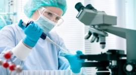 Incubadora británica, a la caza de firmas biotecnológicas argentinas donde invertir