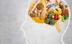 ¿Cómo controla el comportamiento alimentario el sistema nervioso?