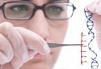 Por primera vez modifican un gen dentro del cuerpo de un hombre