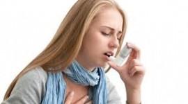 Primeras evidencias de la relación entre asma y ácidos grasos
