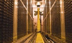 Biobanco británico hará públicos 500 mil genomas para nuevos fármacos