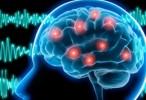 Esclerosis de hipocampo, principal causa de la epilepsia en adultos