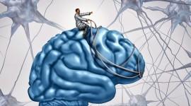 Efecto placebo: se suman estudios para develar sus misterios