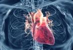 Científicos crean un tratamiento inhalable para la insuficiencia cardíaca