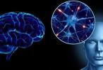 El calcio puede influir en el desarrollo del Parkinson