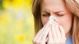 Científicos franceses identifican el origen de las reacciones alérgicas