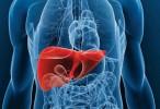 Un derivado de la vitamina A previene la recurrencia del carcinoma hepatocelular