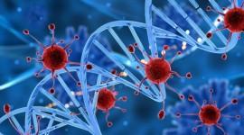 Nuevas claves para entender la variabilidad de los retrovirus