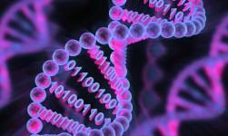 Crean una revolucionaria «impresora de ADN» artificial