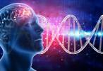 Descubren una base genética común de los trastornos psiquiátricos