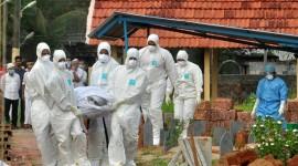 OMS advierte sobre el peligroso virus Nipah: no tiene cura y mató a 17 personas en la India